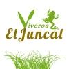 Viveros El Juncal Foto 1